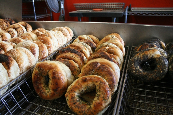 Bagels at Myer's Bagels in Burlington, Vermont