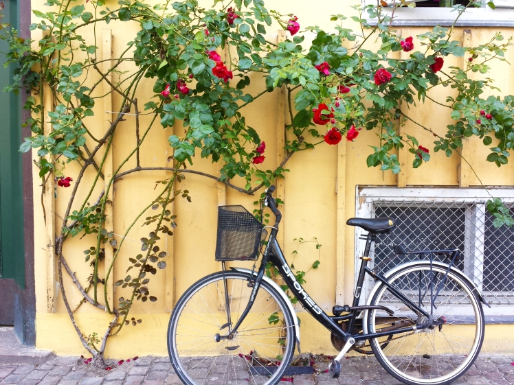 Copenhagen Bike and Flowers