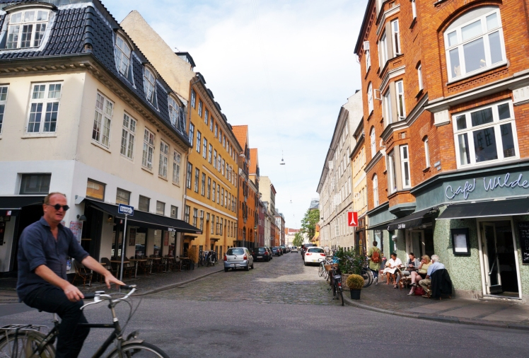 Copenhagen Street and Bike